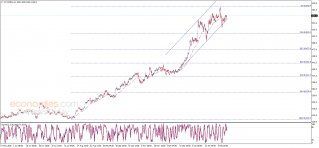No news for Corn price – Analysis - 18-02-2021
