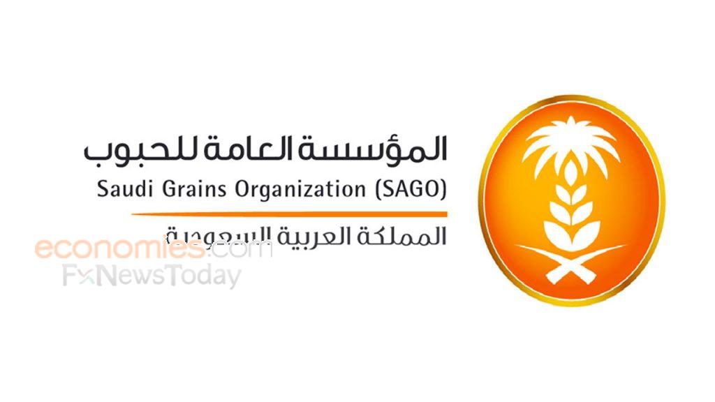 مع توسيع عمليات التخصيص.. السعودية تخطط لبيع صوامع الحبوب