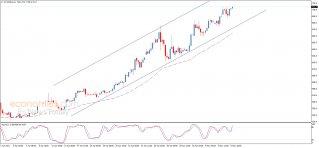 أسعار الذرة تستمر بالارتفاع – تحليل - 07-05-2021